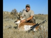 Guided Antelope Hunts in Montana